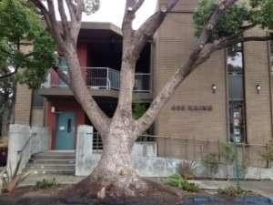 405 Kains Avenue Building